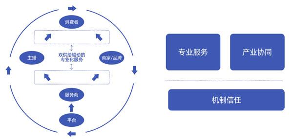 Top social|social|新媒体营销平台|kol投放|kol|kol投放平台